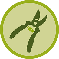 tree pruning icon