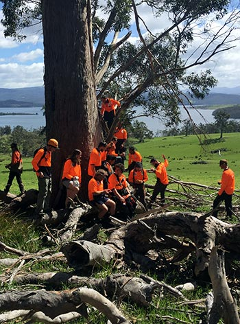 Some of the voluteer arborists helping to save the swift parrot