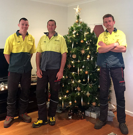 Troy, Russ and Rob the assured tree care arborists