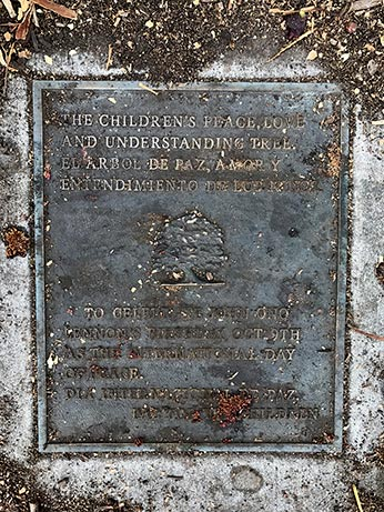 memorial plaque of large tree
